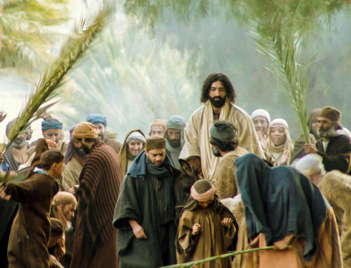 Hosanna in the Highest: Palm Sunday Perspectives